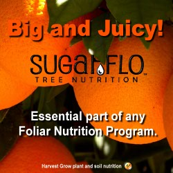 SugarFlo Foliar Nutrition